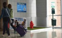 Airports Find Various Ways to Provide Relief Areas for Service Animals, Pets